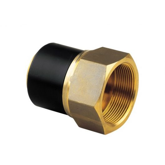 Spigot Adaptor PE-Brass Female Thread