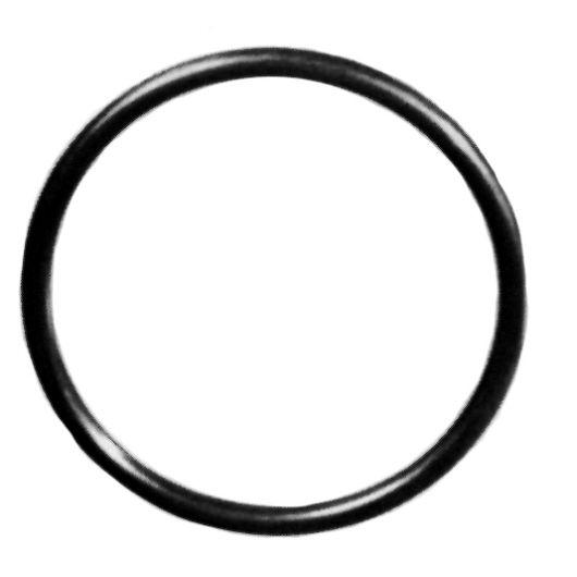 TP Union O-Ring FPM