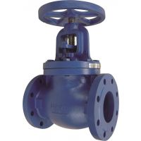 ART260 Cast Iron PN16 Globe Valve 5""